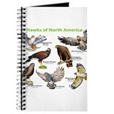 Hawks of North America Journal