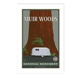 Muir Woods 1 Postcards (Package of 8)