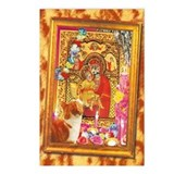 WonderWorld Religious Cats Postcards Package of 8