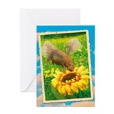 WonderWorld Hippoflight Greeting Card