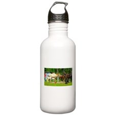The Hitch Water Bottle