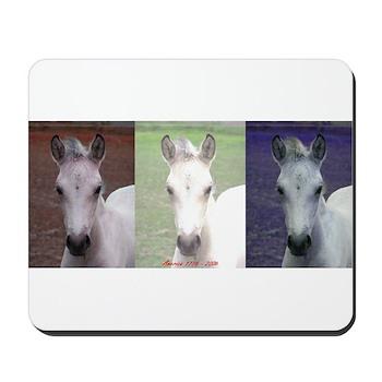 Horse Patriot Mousepad