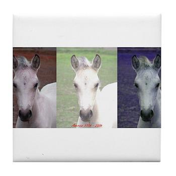 Horse Patriot Tile Coaster