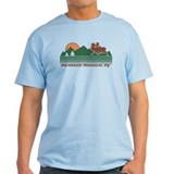 Adirondack Mountains NY T-Shirt
