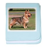 Swedish Vallhund 9Y777D-010 baby blanket