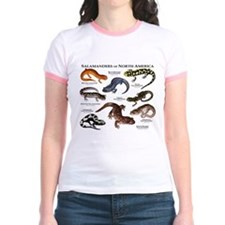 Salamanders of North America T
