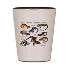 Salamanders of North America Shot Glass