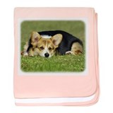 Welsh Corgi Pembroke 9M72D-05 baby blanket