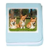 Welsh Corgi Pembroke 9M72D-08 baby blanket