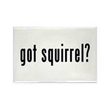 GOT SQUIRREL Rectangle Magnet