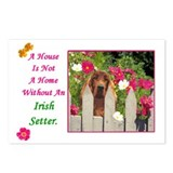 Unique Irish setter Postcards (Package of 8)