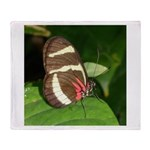 Butterfly pic Throw Blanket