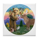 StFrancis-Pony Tile Coaster