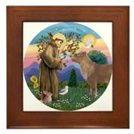 StFrancis-Pony Framed Tile