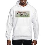 Future Shadow Hooded Sweatshirt