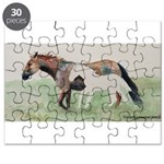 Future Shadow Puzzle