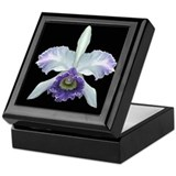 Ceramic Orchid Keepsake Box