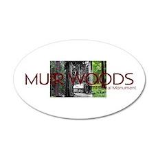 ABH Muir Woods 20x12 Oval Wall Decal