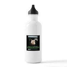 Dogs in Cars Water Bottle
