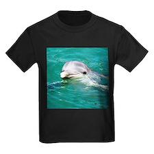 Dolphin in Caribbean Blue Wat T