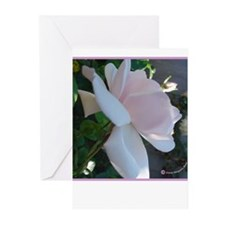 Cecil Brunner, Side View Greeting Cards (Package o