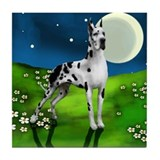 HARLEQUIN GREAT DANE DOG MOON Tile Coaster
