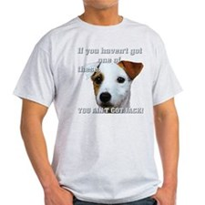 Cute Jack russell terriers T-Shirt