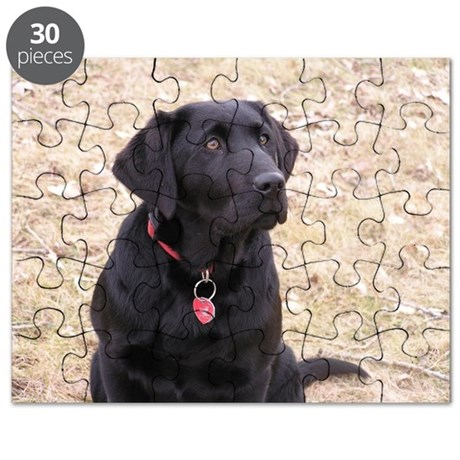 Black Lab Puzzle