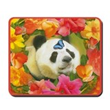 WonderWorld Butterfly Mousepad
