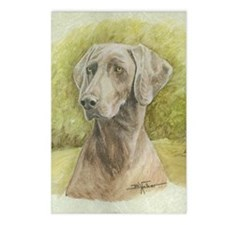 Weimaraner Postcards (Package of 8)