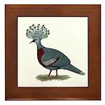 Victoria Crowned Pigeon Framed Tile
