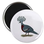 Victoria Crowned Pigeon Magnet