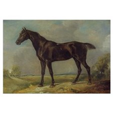 Golding Constable's Black Riding-Horse, c.1805-10