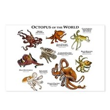 Octopus of the World Postcards (Package of 8)