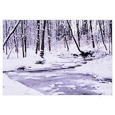 New York State, Erie County, Emery Park, Stream fl