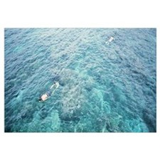 High angle view of two men snorkeling, Phi Phi Isl