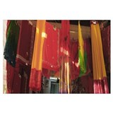 Saris hanging in a clothing store, Udaipur, Rajast