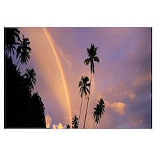 Rainbow behind palm trees, French Polynesia