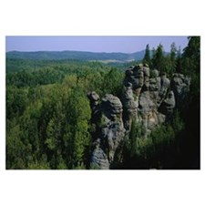 Rock formations in a forest, Camel Rock, Garden of