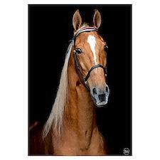 Sorrel Horse Wall Art