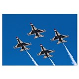 Thunderbirds 4 Bird Side Wall Art