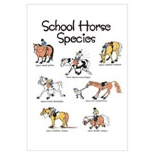 School Horse Species Wall Art