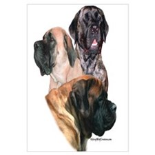 Mastiff 159 Wall Art