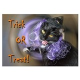 Trick-or-treat kitty-witch Wall Art