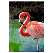 Flamingo Neck Wall Art