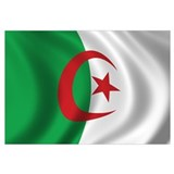 Flag of Algeria Wall Art