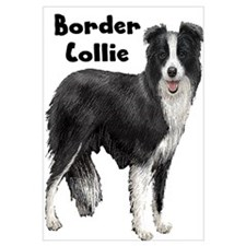 Border Collie Wall Art