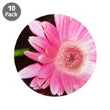 "Pink Gerber Lily 3.5"" Button (10 pack)"