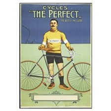 Poster advertising 'The Perfect' bicycle, 1895 (co