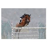 Equestrian Show Jumper Wall Art